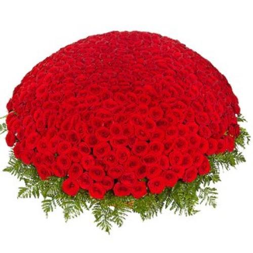 Купить на заказ Заказать 301  роза с доставкой по Рудному с доставкой в Рудном